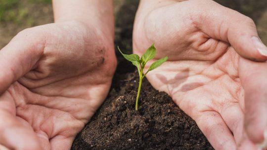 Riscopriamo l'altruismo