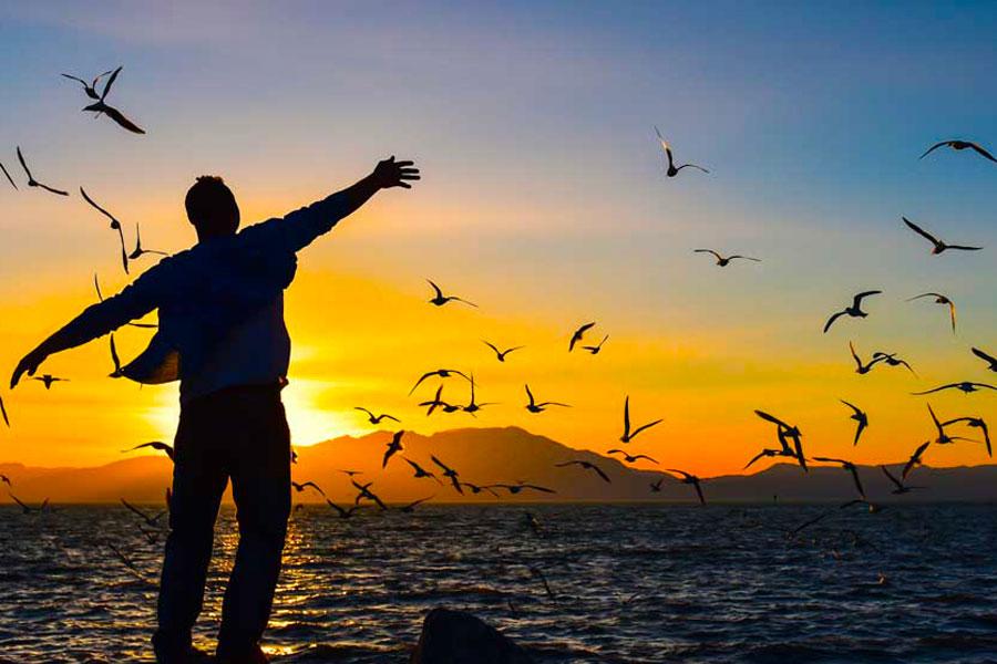 Riflessioni in libertà